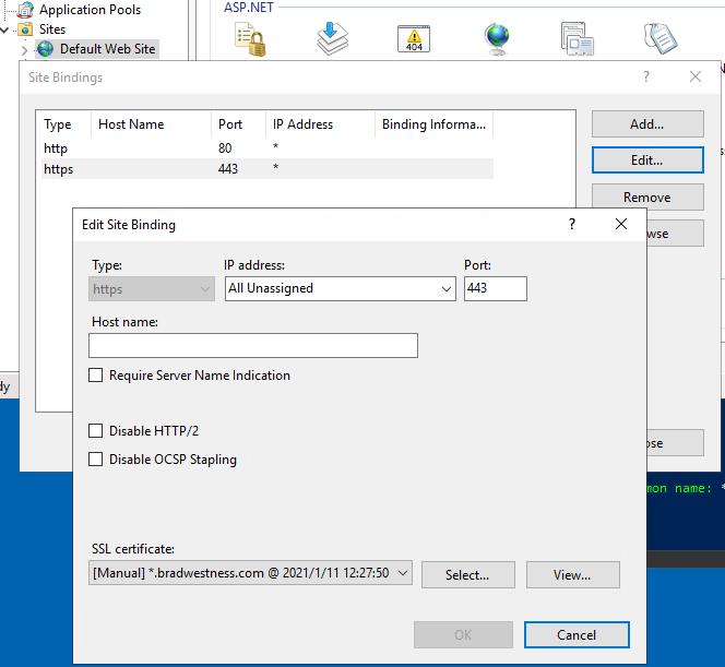 Wildcard Let's Encrypt certificate configured for the default website in IIS